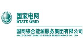 国网综合能源服务集团有限公司